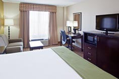 Arlington Texas Hotel King Room